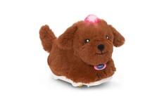 Go! Go! Smart Animals - Furry Labradoodle